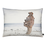 Beach Rock Pillow