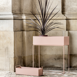 Plant Box, Light Pink/FREE SHIPPING