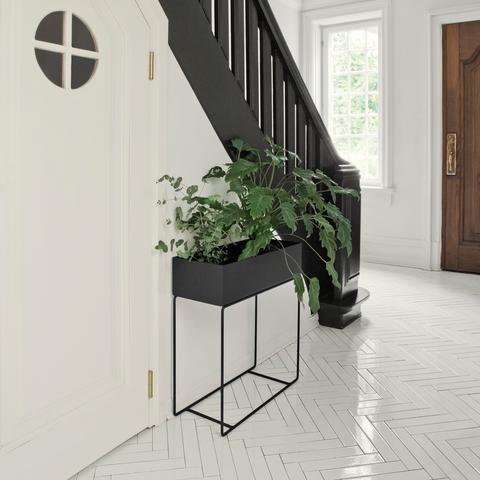 Plant Box, Black/FREE SHIPPING
