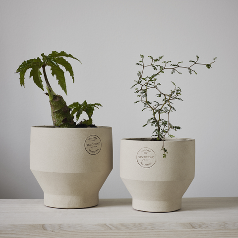 Edge Terracotta Pots, Sierra Yellow