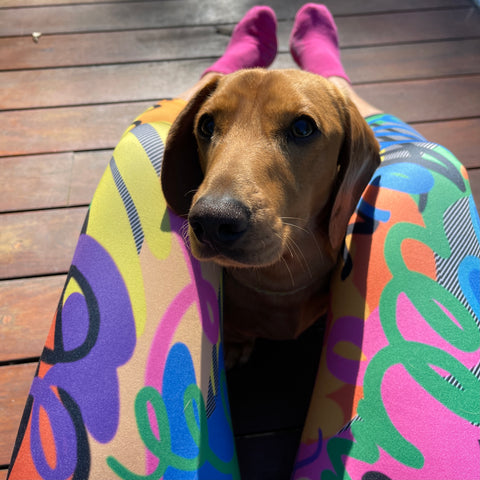 Sustainable leggings made on recycled fabric - colourful with daschund