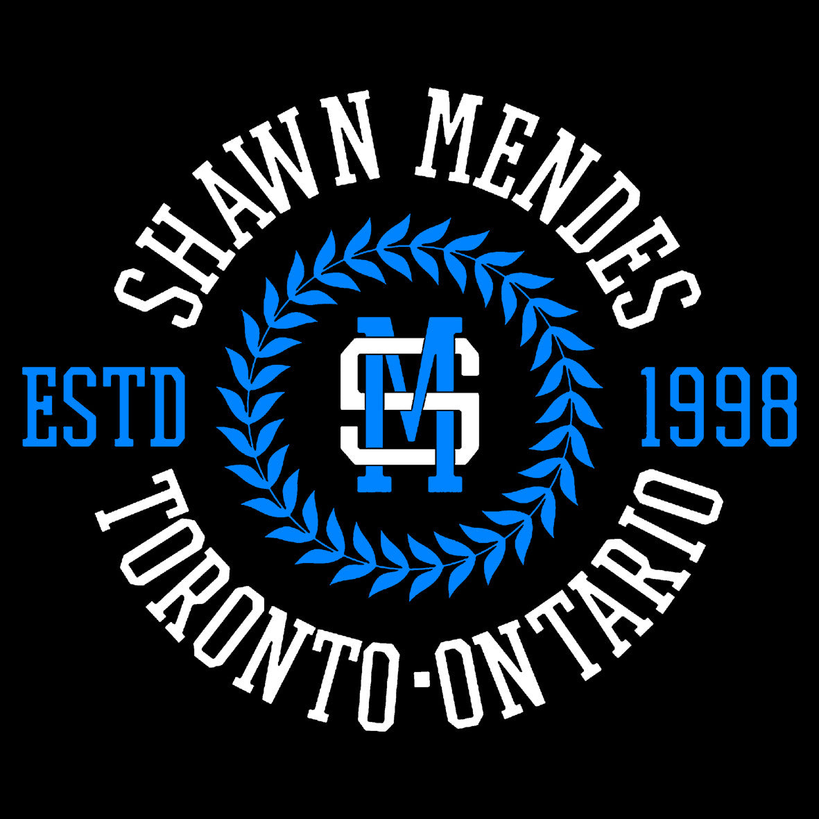 Shawn Mendes 5 Central T Shirts