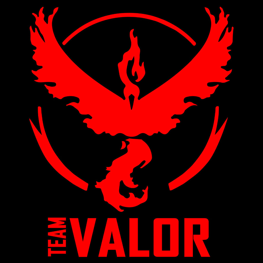 Pokemon Team Valor