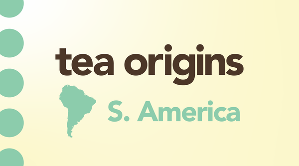 South American Tea & the Unique Origin of Yerba Maté