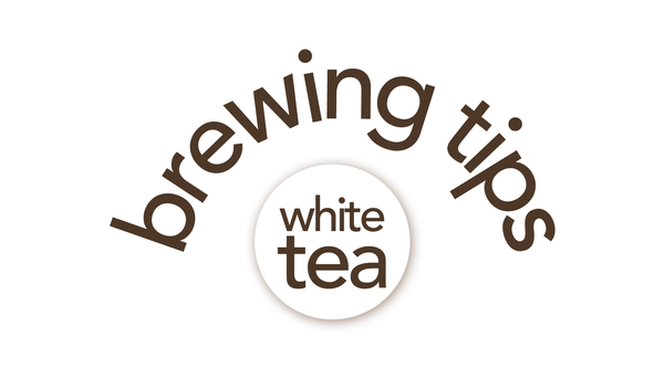Tea Brewing 101: White Tea