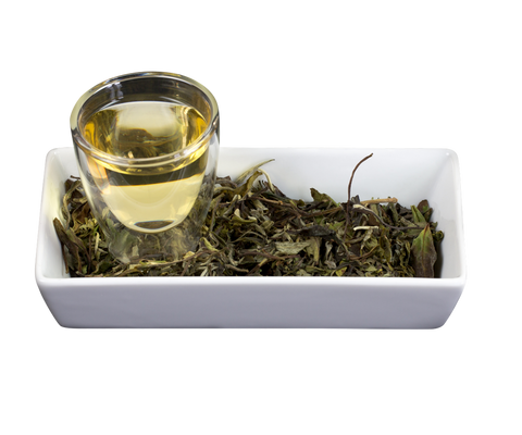 White Tea - The Processing Method & Tea Types