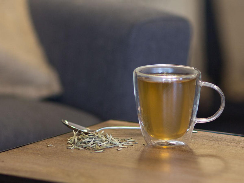 Image of Silver Needle Single Origin Organic Tea Brewed as Hot Tea from Hackberry Tea