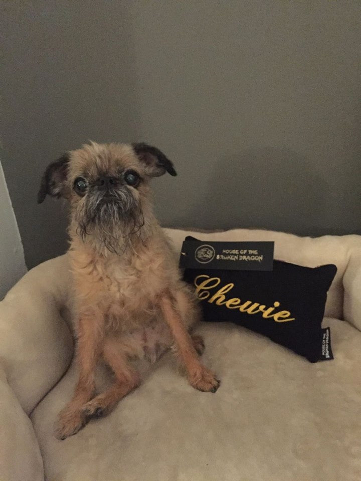 Custom Luxury Pet Pillow