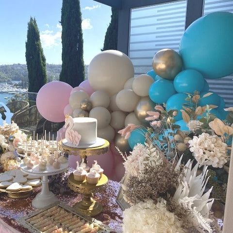 Ballerina Swan Catering Package Sydney Kids Party