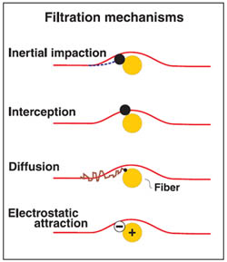 Filtration Mechanisms Diagram