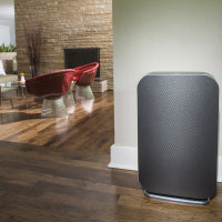 Alen BreatheSmart Flex with Graphite Panel in living room