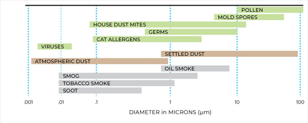 A diagram showing the range of particulates a True HEPA filter can capture