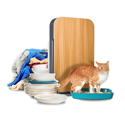 BreatheSmart 45i with cat, laundry and dirty dishes