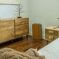 Alen BreatheSmart Flex with Oak Panel in hallway
