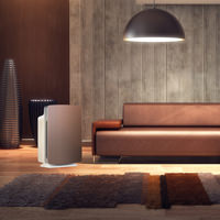 Alen BreatheSmart  with Brushed Bronze Panel in living room