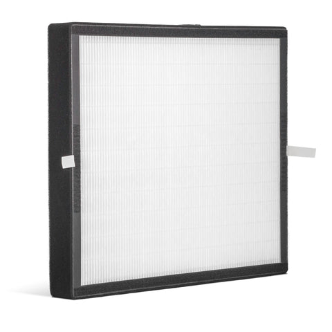 Alen A350 HEPA-Fresh Replacement Filter: BF25A