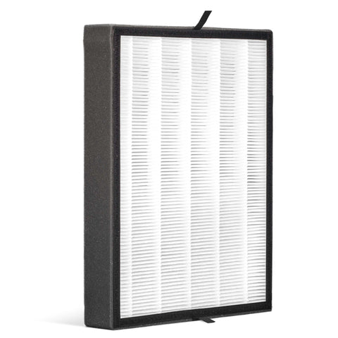 Alen BreatheSmart FLEX True HEPA-OdorCell Filter: B4-Odor / FL40-MP