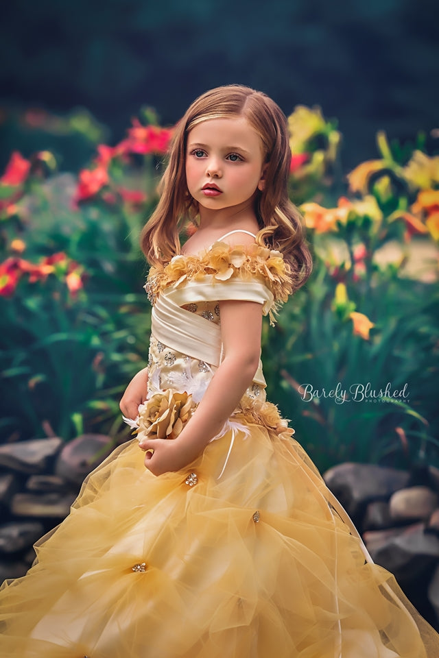 """Beautiful Belle""... A Stunning Princess Gown"
