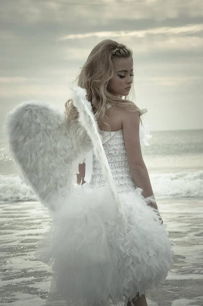 Large 25 X 25 Quot Angel Wings Photo Prop Costume Runway