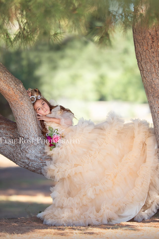 """Fancy Frills""... A Gorgeous Ruffled Tulle Ballgown"
