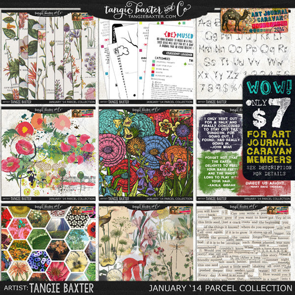 Art Journal Caravan 2014 {January Collection}