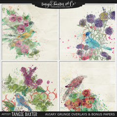 Aviary Grunge Overlays & Bonus Papers