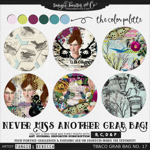 ~EXPIRED~ TB&CO Grab Bag #17 {January 2016}
