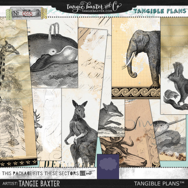 Tangible Plans™ {Add On No. 025}