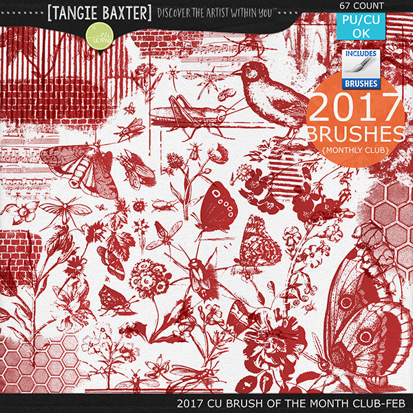 2017 Brush of the Month Club - No. 02 February Brushes