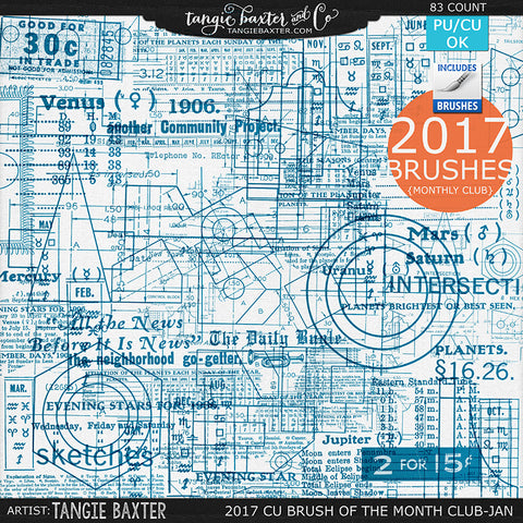 2017 Brush of the Month Club - No. 01 January Brushes
