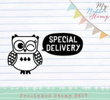 Owl Special Delivery Pre-inked Stamp. Original design, proudly made in Houston.