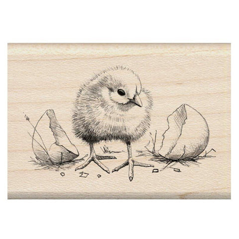 Chick Rubber Stamp • Inkadinkado Mounted Rubber Stamp