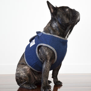 enzo | navy harness