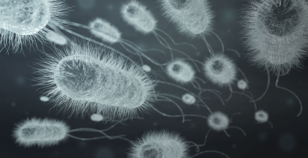 bacteria infecting background