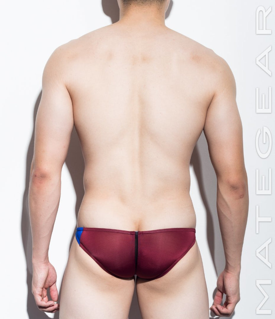 MATEGEAR - Sexy Men's Swimwear, Underwear, Sportswear and Loungewear - SALE! Sexy Men's Swimwear Ultra Swim Pouch Bikini - Nan Song (Tapered Sides / V-Front) (Series IV) (Translucent Back)