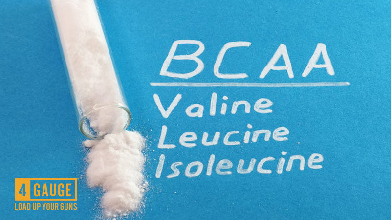 a picture of the three branched chain amino acids bcaas