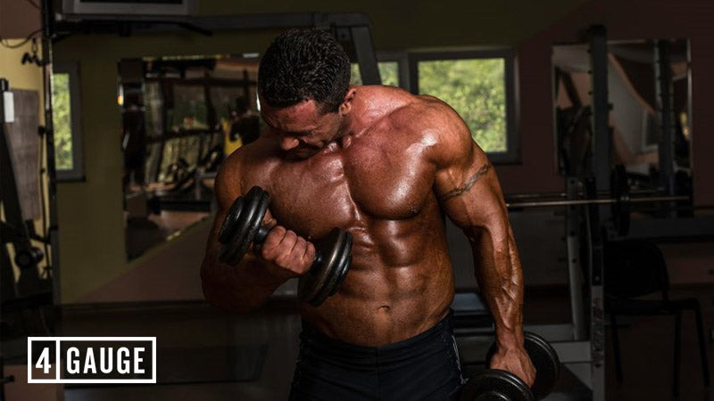 Muscular bodybuilder performing bicep curls with dumbbells in the gym