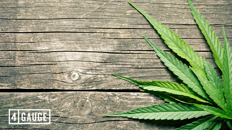 Weed-plant-on-wooden-table