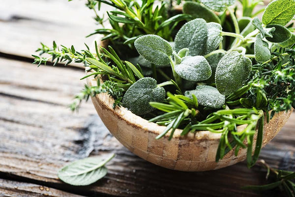 Exposure to other herbs can also affect tea