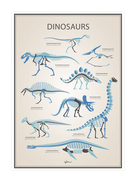 Dinosaur skeletons poster decal - Vintage Look