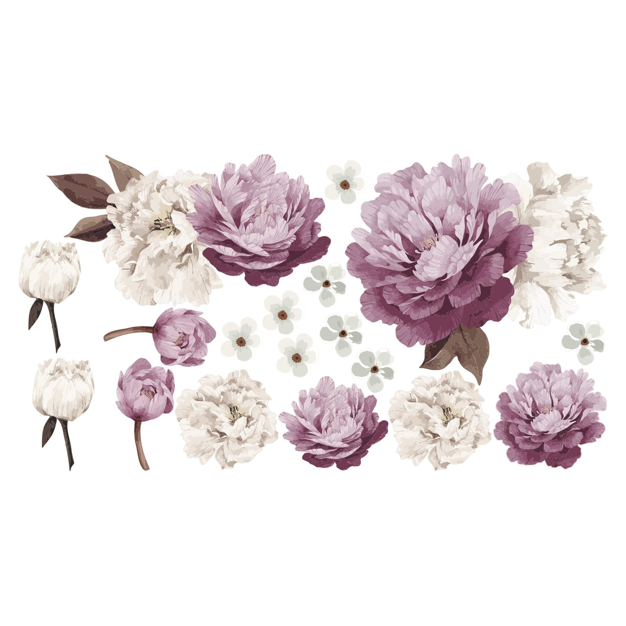 Peony flower Set - Individual cut out flowers.