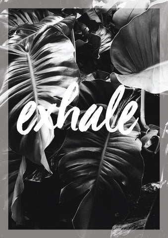 Exhale - decal.