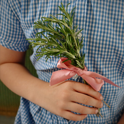Pink ribbon around a bunch of rosemary