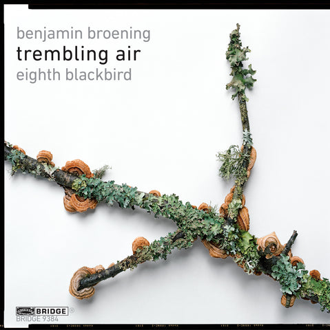 Trembling Air: Music by Benjamin Broening <BR> BRIDGE 9384