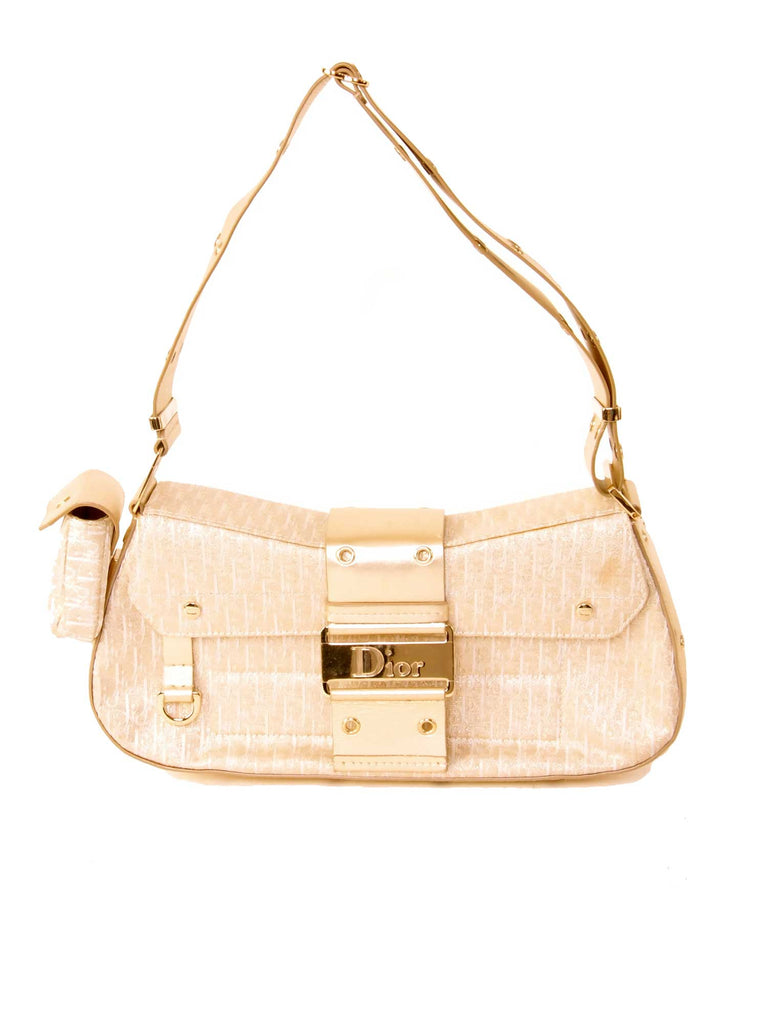 Christian Dior Metallic Canvas Logo Bag