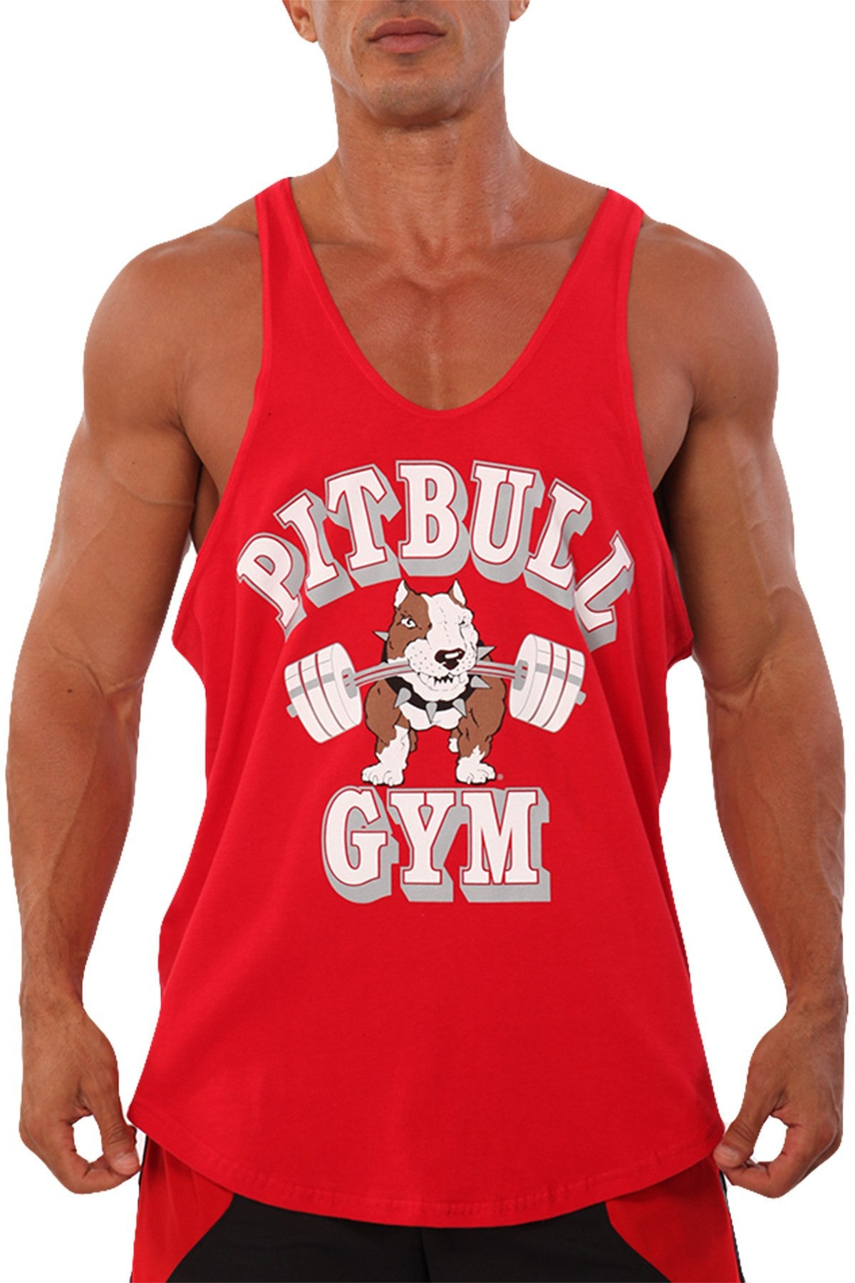 4164e4de858d3 ... pitbull barbells stringer tank top red fitness apparel gym weight  lifting clothes ...