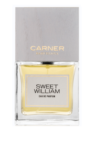 CARNER Barcelona SWEET WILLIAMS
