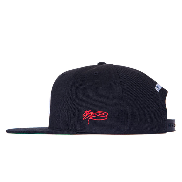 SSUR VS WATCH X WITNESS - WISHBONE SNAPBACK