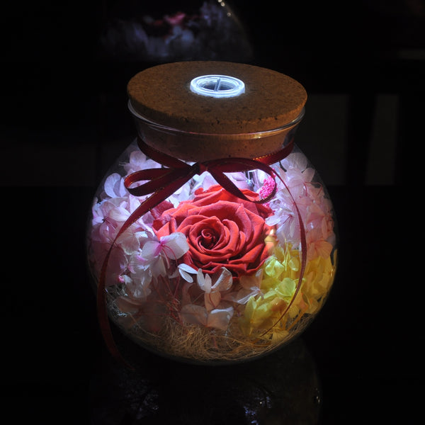 Preserved Flower Gift - Galaxy