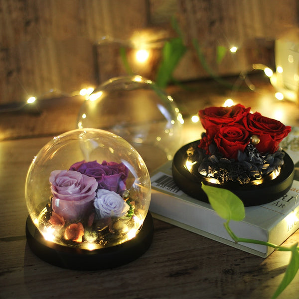 Preserved Flower Gift - Beauty And Beast